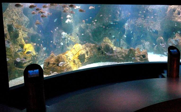 Aquarium in Crete island Greece - Cruises in Greece - Greek cruises - Greek Travel Packages - Cruise Greek islands - Travel to Greek islands - Tours in Greece - Travel Agency in Greece